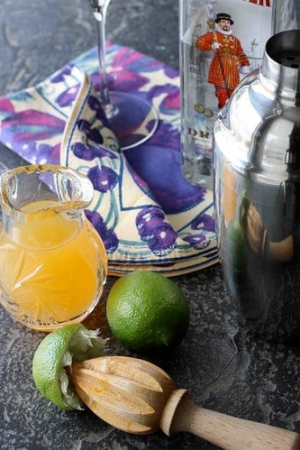 Passionfruit & Lime Gin Martini Recipe   cookincanuck.com