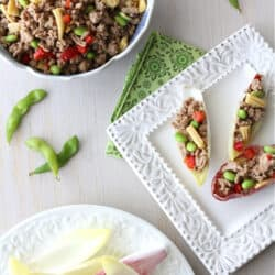 Stuffed Endive Spears with Teriyaki Turkey, Edamame & Baby Corn Recipe