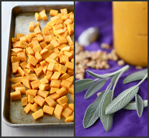 Roasted Butternut Squash & Balsamic Sauce Recipe for Pasta (& Other Things)