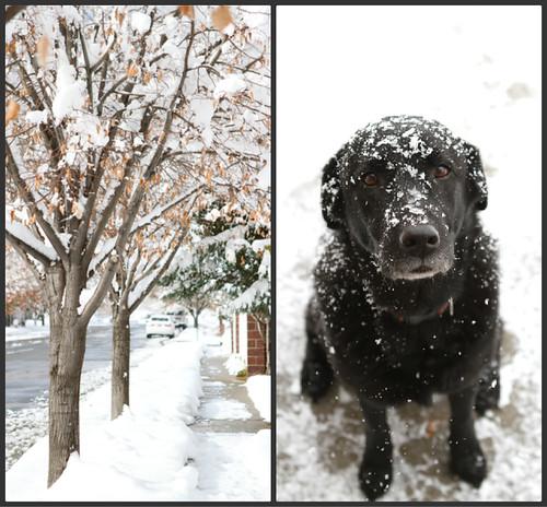 SnowCollage1
