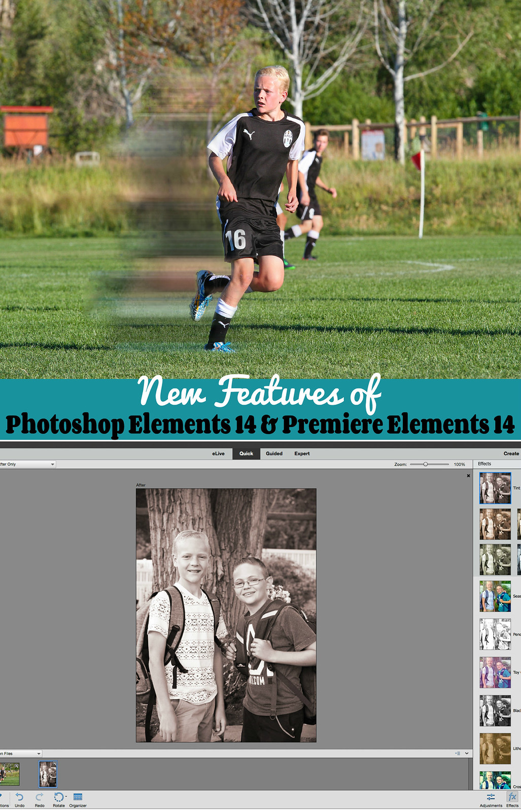 New Feature of Photoshop Elements 14 and Premiere Elements #photography