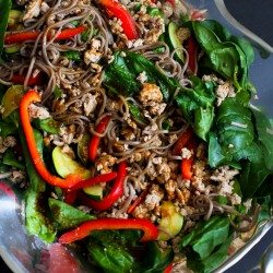 Soba Noodle, Turkey and Spinach Salad Recipe…You might not be able to stop at just one serving of this delicious dinner salad! 286 calories and 7 Weight Watchers SmartPoints