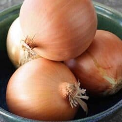 How to: Chop an Onion
