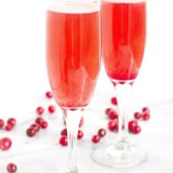 Cranberry Prosecco Cocktail Recipe