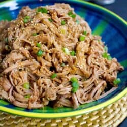 This Slow Cooker Teriyaki Pulled Pork is fantastic over rice, in tacos with slaw or on hamburger buns! 240 calories and 7 Weight Watchers SmartPoints