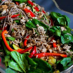 Healthy and delicious! This gluten free soba noodle salad is packed with lean protein and vegetables. 286 calories and 5 Weight Watchers SP | Cold | Asian | Dressing | Easy | Turkey | Recipe | Simple | Meal Prep | Japanese #glutenfree #sobanoodles #wwrecipes #smartpoints #healthydinnerrecipes