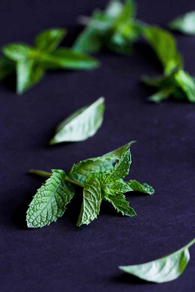 Mint leaves on a black background