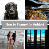 How to Frame the Subject & Other Photo Composition Tricks